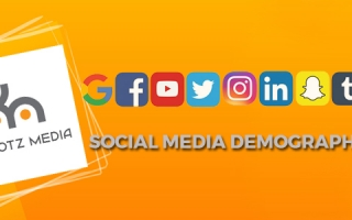Social Media Demographics 2017